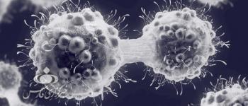 ساخت مولکولی که از تکثیر سلولهای سرطانی جلوگیری میکند
